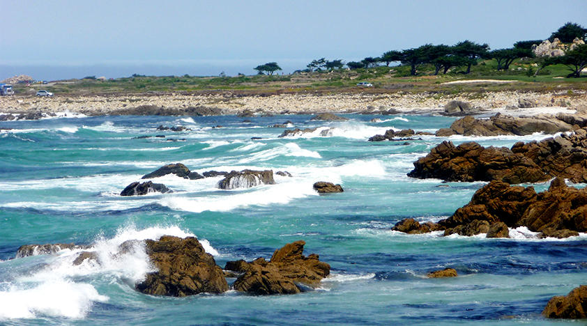 Monterey and Carmel Luxury Tour