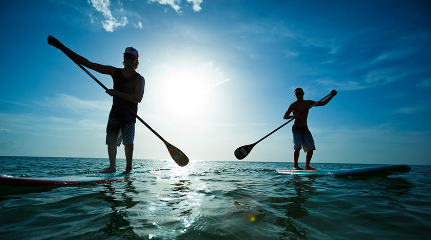 Paddle Board Lesson and Rental
